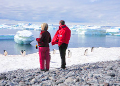 Antarctica Couple