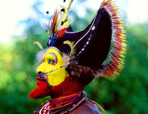 Papua New Guinea Huli Wigman Headress