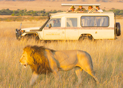 Top Exotic Destinations Tanzania